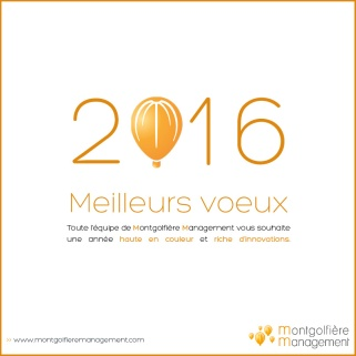 Voeux 2016 (2)
